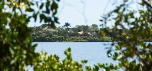 doonella noosa qm properties previous projects lake doonella