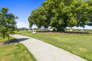 river oaks oak tree park qm properties