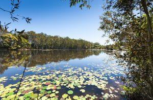 sandstone lakes qm properties ningi land for sale