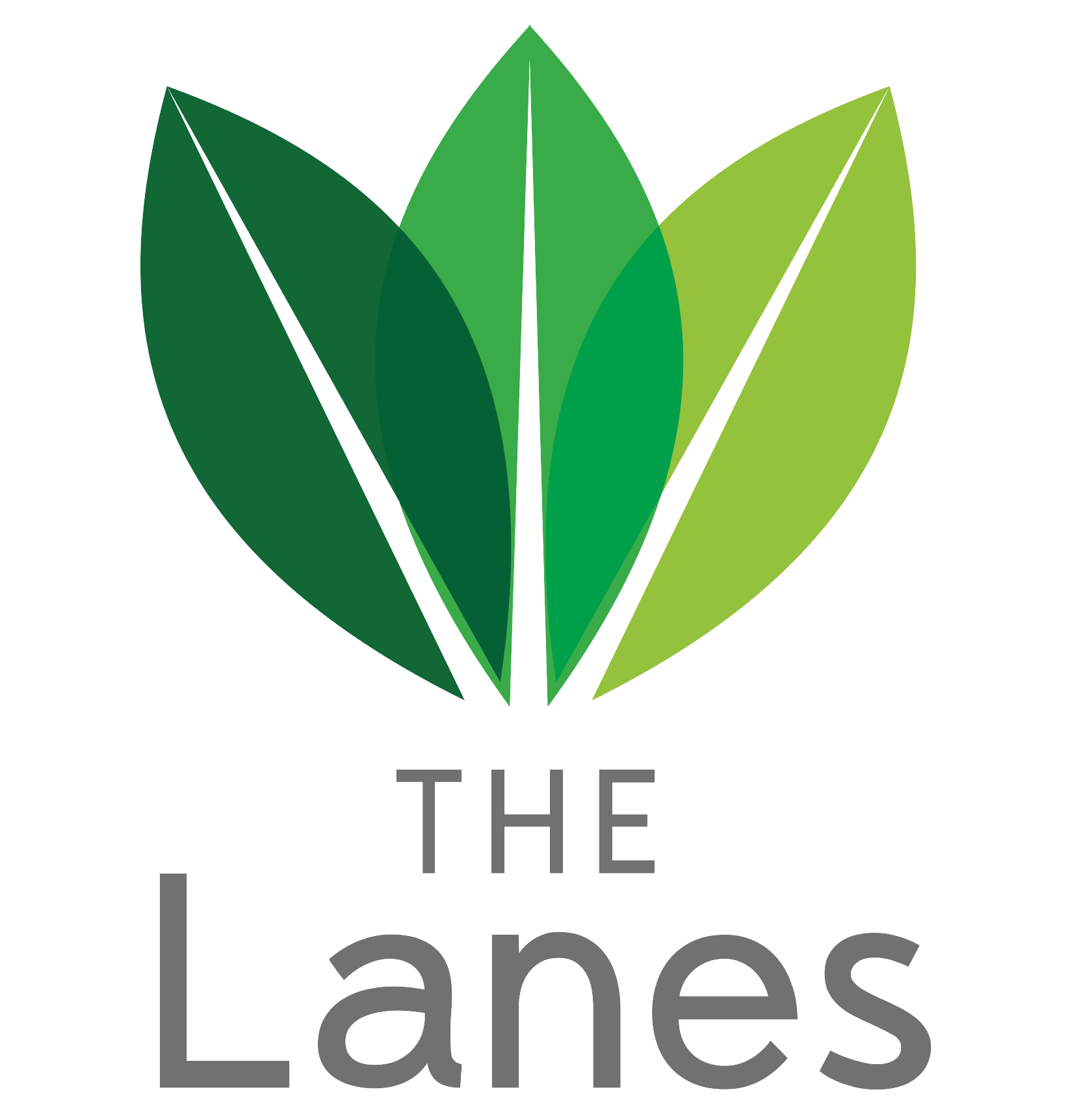 the lanes logo