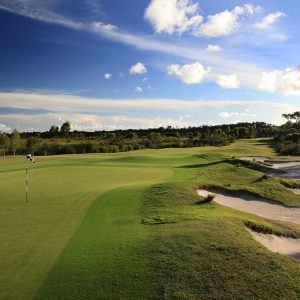 pacific harbour golf course