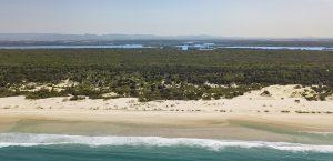 may news south stradebroke island waters